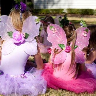 Fairy Birthday Party - Theme Image
