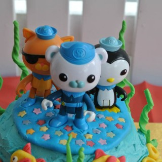 Octonauts Birthday Party - Theme Image