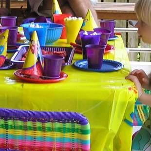 Wiggles Birthday Party - Supplies Image