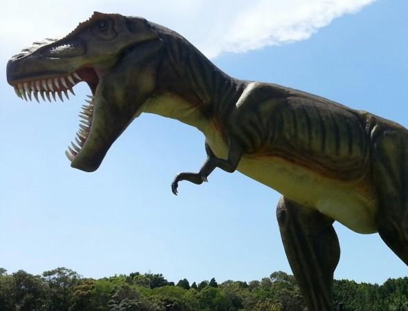 Dinosaur Birthday Party - Main Image