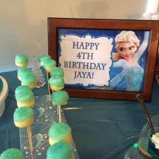Jaya's Frozen Birthday Party - Main Image