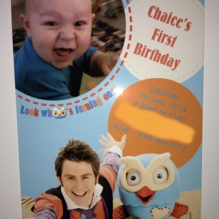 Giggle and Hoot 1st Birthday - Main Image