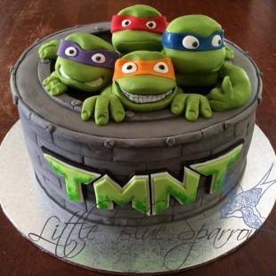 Teenage Mutant Ninja Turtle Party  - Cake Image