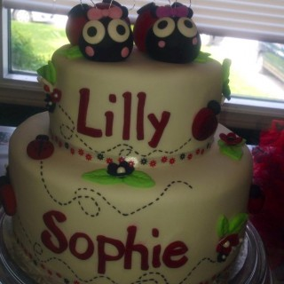 Twin's Ladybird Birthday Party  - Main Image