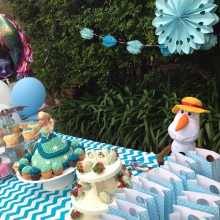 Frozen Party by the Pool - Main Image