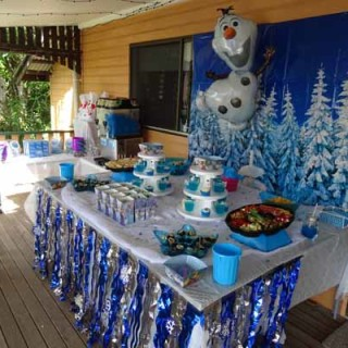 Frozen party for 7 year old - Main Image